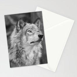 Beautiful wolf Stationery Cards