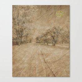 Snow in April Canvas Print