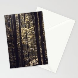 Brown light in the forest Stationery Cards