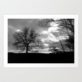 Silver Tree Silhouette Art Print