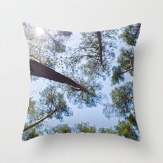Sunny sky over the pines Throw Pillow
