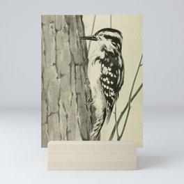 Vintage Print - Downy Woodpecker Mini Art Print