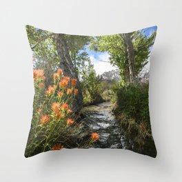 Wild Flower Creek Eastern Sierra  5-18-20 Throw Pillow