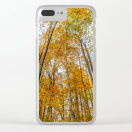 Reach High and Touch the Sky Clear iPhone Case