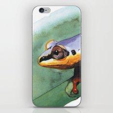 rana del madagascar 2 iPhone & iPod Skin