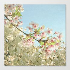 Pink on White Canvas Print