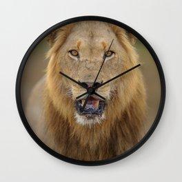 Male Lion photos Wall Clock