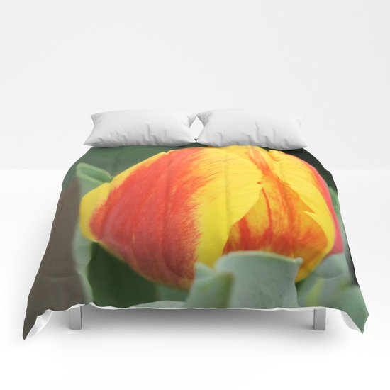 Spring Flames Comforters
