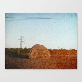 Lost needle... Canvas Print
