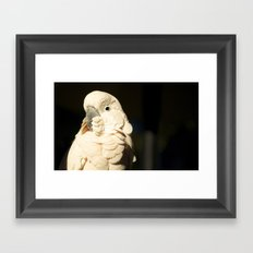 Bird Shadow# 2 Framed Art Print