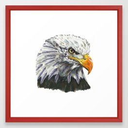 Bald Eagle! Framed Art Print