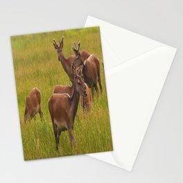 Red Deer Stationery Cards