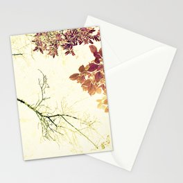 Barren w/Abundance - IA Stationery Cards