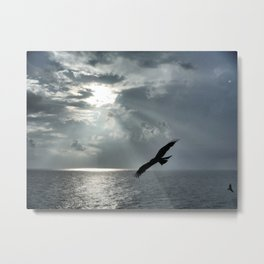 Clifftop hunter Metal Print