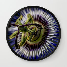 Macro photo of flower of passion Wall Clock