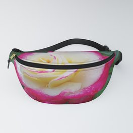 Double Delight Rose - Red and cream beauty Fanny Pack