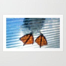 Seagull feet on transparent plexiglass window Art Print
