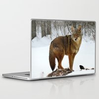 coyote Laptop & iPad Skins featuring Coyote by tracy-Me