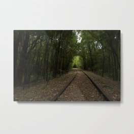 Tree Tunnels Metal Print