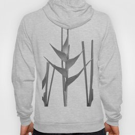 Three Heliconia black white Design Hoody