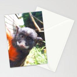 White-lipped tamarin monkey Stationery Cards