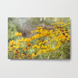 Textured Black-Eyed Susans Metal Print