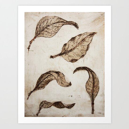 aquatint leaves Art Print