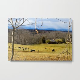 Cattle ranch overlooking the Blue Ridge Mountains Metal Print