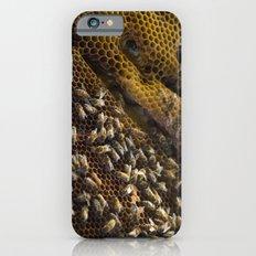 caribbean bees Slim Case iPhone 6s