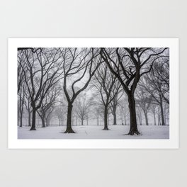 NYC Winter In Central Park Art Print