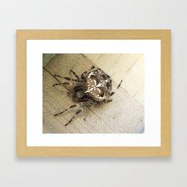 Deck guardian Framed Art Print