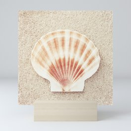 Scallop Shell Photography, Seashell Photograph, Peach Pastel Beach Photo Print Mini Art Print