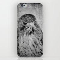hawk iPhone & iPod Skins featuring Hawk by SilverSatellite