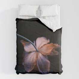 Petals Light the Way || Floral Photography Comforters