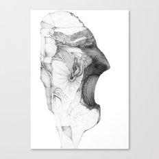 Fraction Canvas Print