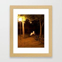 Il Parco Framed Art Print