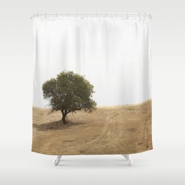 The solitary holm oak Shower Curtain