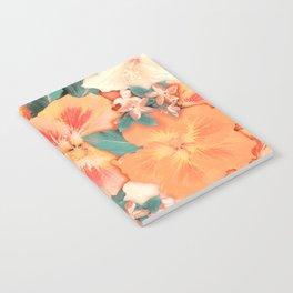 Aloha Orange Sherbet Notebook