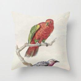 Tropical Bird Illustration - 18th Century Throw Pillow