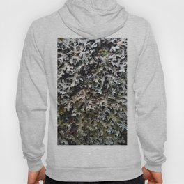 Moss and lichen Hoody