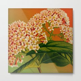 Floral Branch Metal Print