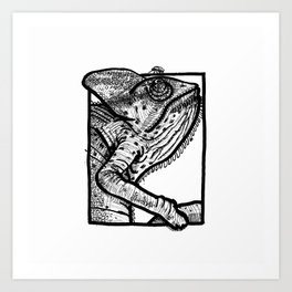 The chameleon and the common fly Art Print