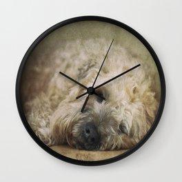 Wheaten Terrier - Let Sleeping Dogs Lie Wall Clock