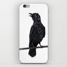 Verklempt Crow iPhone Skin
