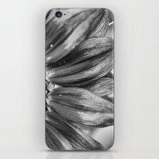 B&W Sunflower iPhone & iPod Skin