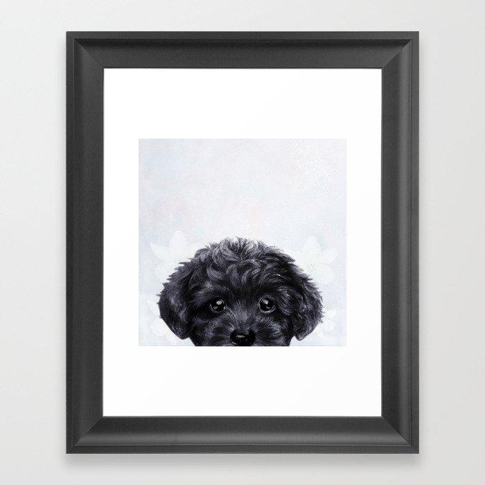 Toy poodle Black Gerahmter Kunstdruck