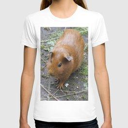 Lovely Guinea Pig II T-shirt