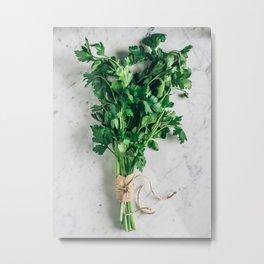 green parsley Metal Print