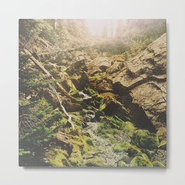 Mossy Creek Metal Print
