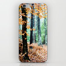 Once Upon a Time 2 iPhone & iPod Skin
